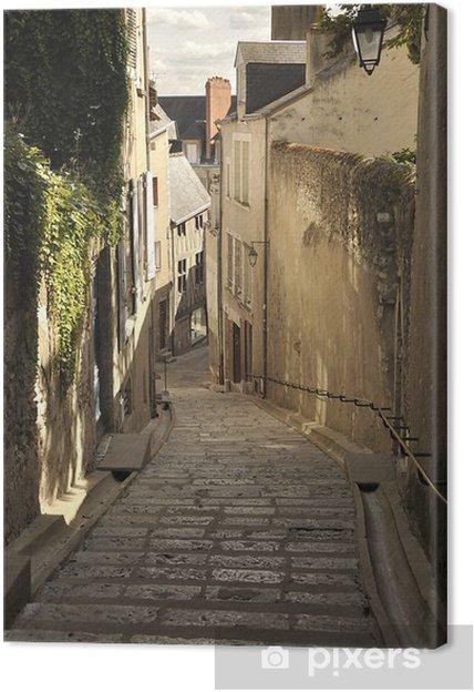Obraz na płótnie Blois - Europa