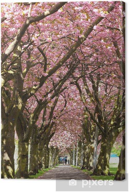 Obraz na płótnie Blossom Street, Edinburgh - Tematy