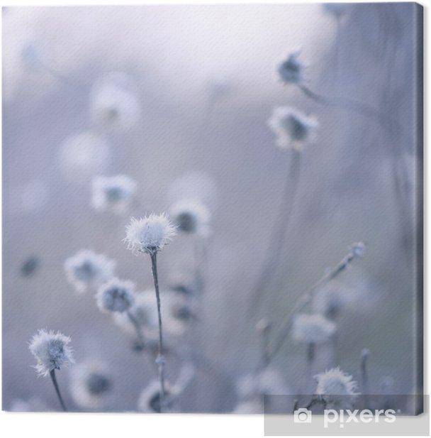 Obraz na płótnie Blue stonowanych tle kwiaty - Style