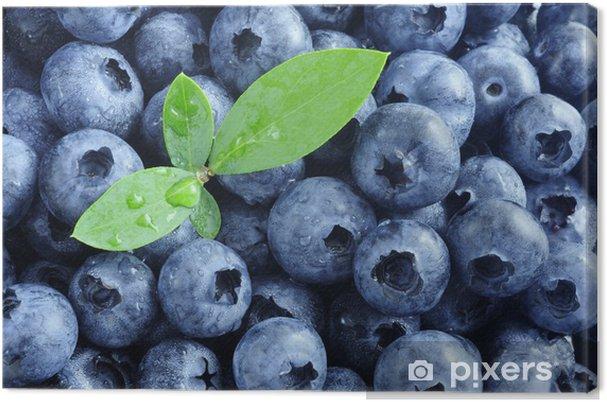 Obraz na płótnie Blueberry - Owoce