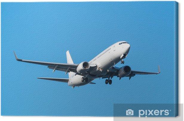 Obraz na płótnie Boeing 737-800 - Transport powietrzny