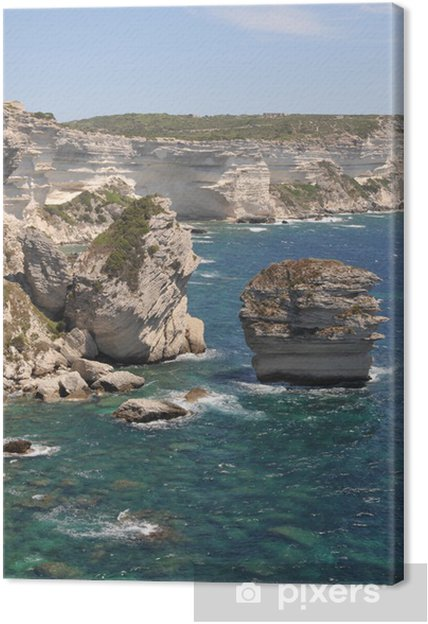 Obraz na płótnie Bonifaccio rafa, pionowe Plan - Cuda natury