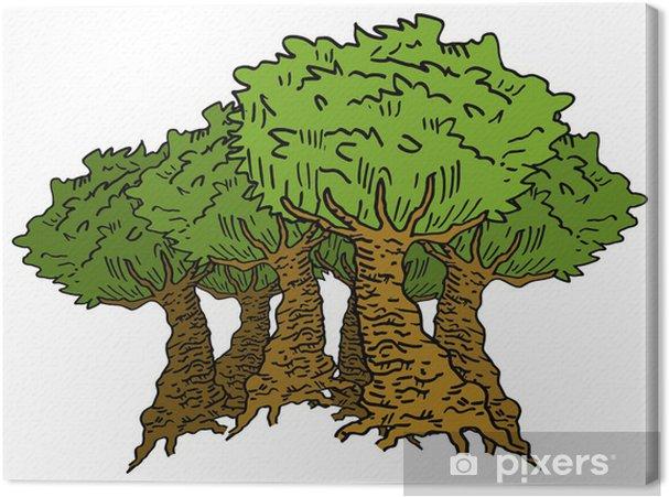 Obraz na płótnie Bosque - Drzewa