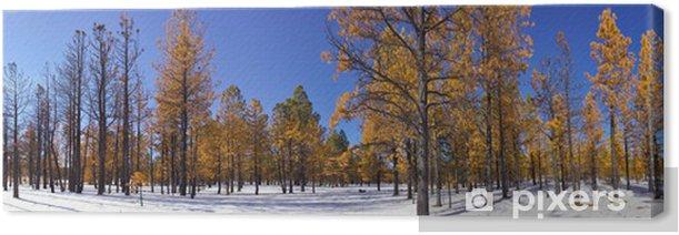 Obraz na płótnie Bryce Canyon las w zimie - Utah, USA - Natura i dzicz