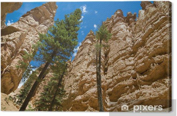 Obraz na płótnie Bryce Canyon - Ameryka