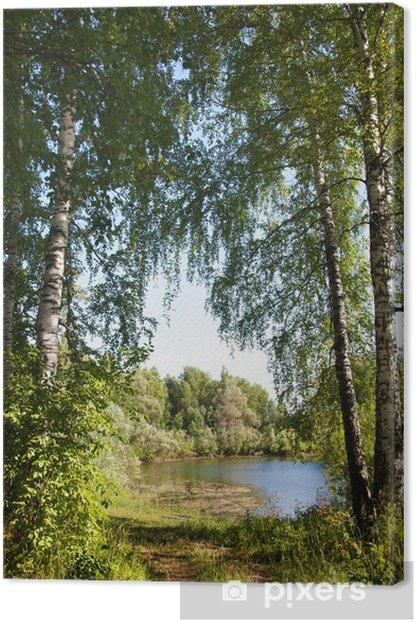 Obraz na płótnie Brzozowy las i staw na Syberii latem - Pory roku
