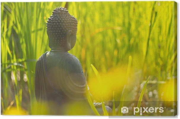 Obraz na płótnie Buddha Medytacja am Wasser - Tematy
