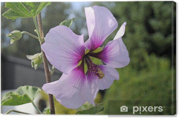 Obraz na płótnie Buschmalve_9516 - Pory roku