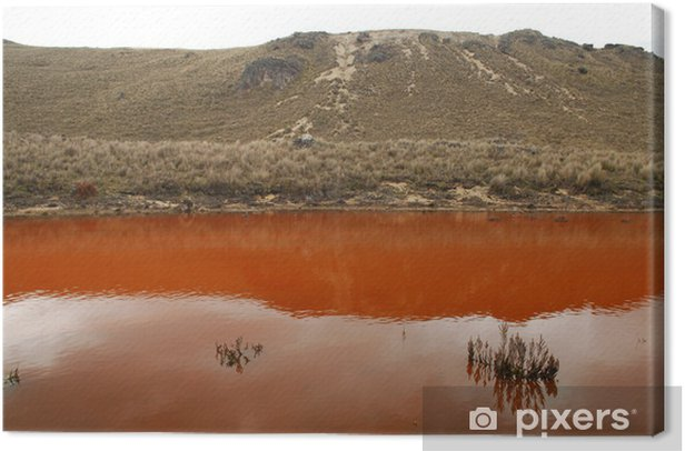 Obraz na płótnie Cajas National Park, Cuenca, Ekwador - Ameryka