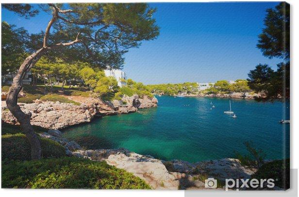 Obraz na płótnie Cala d'Or bay, Wyspa Mallorca, Hiszpania - Tematy