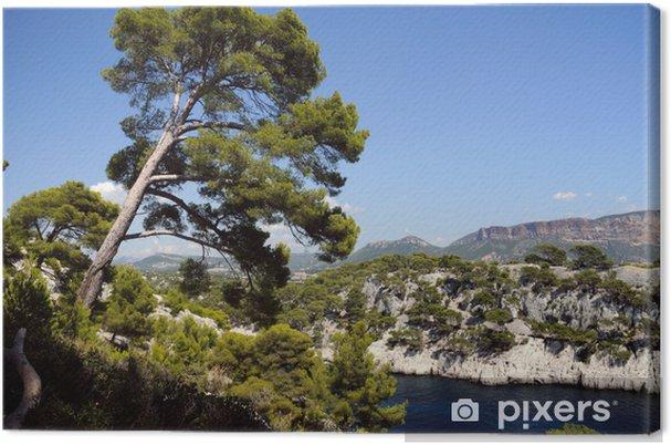 Obraz na płótnie Calanques z portu pin w Cassis we Francji - Europa