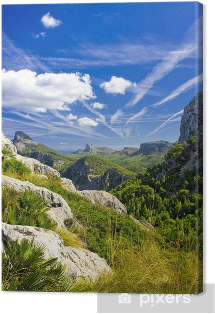 Obraz na płótnie Cape Formentor w wybrzeża Mallorca Baleary - Wyspy