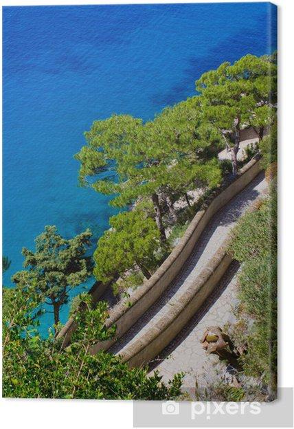 Obraz na płótnie Capri - Inne pejzaże