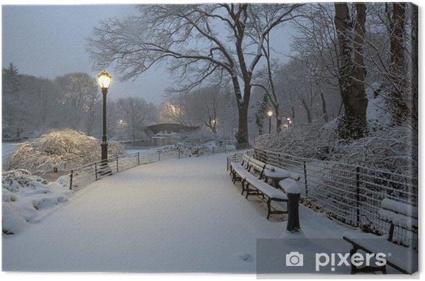 Obraz na płótnie Central Park w burzy śnieżnej - Tematy