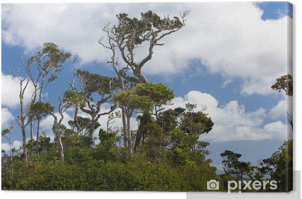 Obraz na płótnie Charakter Mauritius. Wood i gór - Afryka
