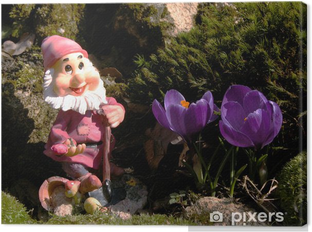 Obraz na płótnie Chciał Jardin de - Dom i ogród