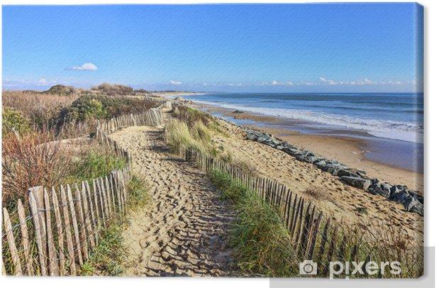 Obraz na płótnie Chodnik na Atlantyku w Bretanii Dune - Tematy