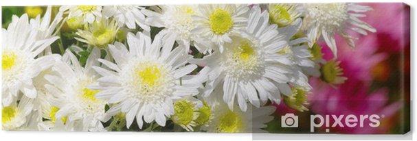 Obraz na płótnie Chryzantema - Kwiaty