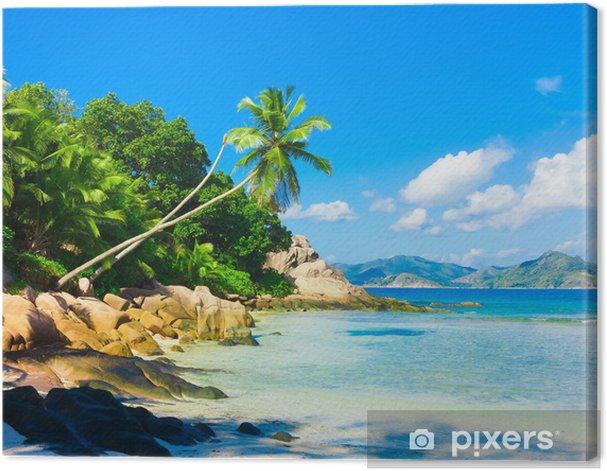 Obraz na płótnie Coconut Palms Horizon - Pory roku