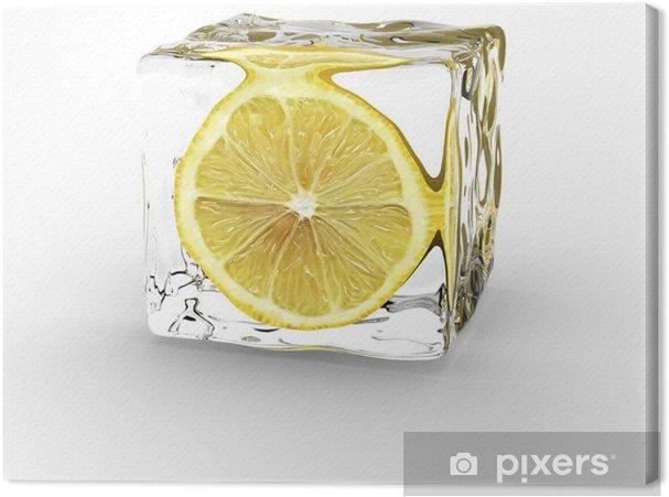 Obraz na płótnie Cytryny kostki lodu - Przeznaczenia