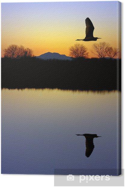 Obraz na płótnie Czapla nad stawem - Ptaki