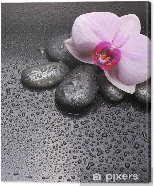 Obraz na płótnie Czarne pestki i kwiat orchidei - Kwiaty