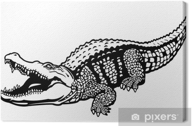 Obraz na płótnie Czarny biały krokodyl nilowy - Inne Inne