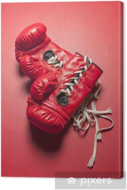 Obraz na płótnie Czerwone rękawiczki - Tematy