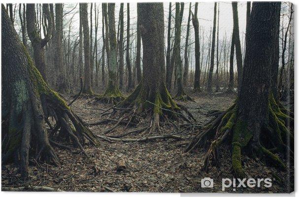 Obraz na płótnie Dark forest - Święta międzynarodowe