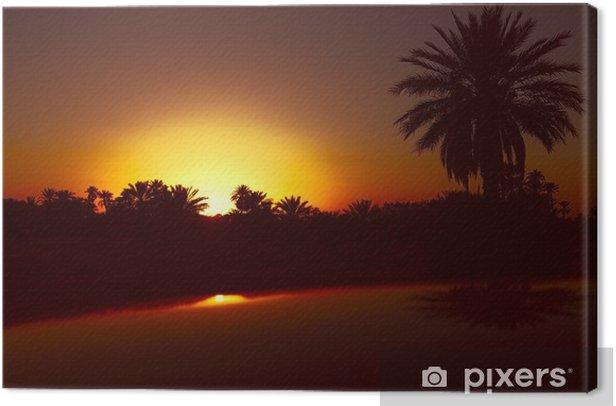 Obraz na płótnie Data palmy z zachodem słońca w Maroku - Afryka
