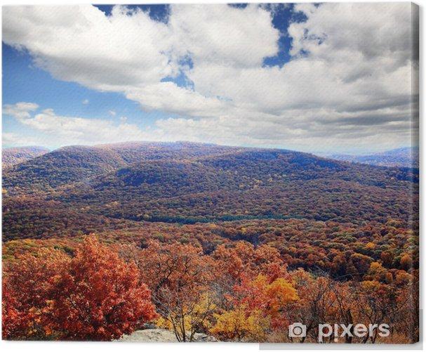 Obraz na płótnie Dekoracje liści z góry Bear Mountain - Pory roku