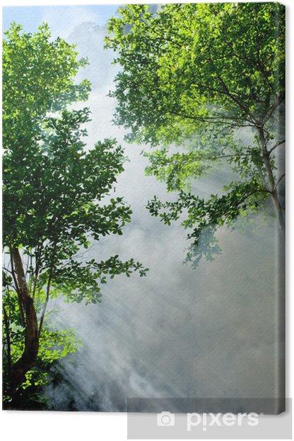Obraz na płótnie Dekoracje ranka lasów tropikalnych - Drzewa
