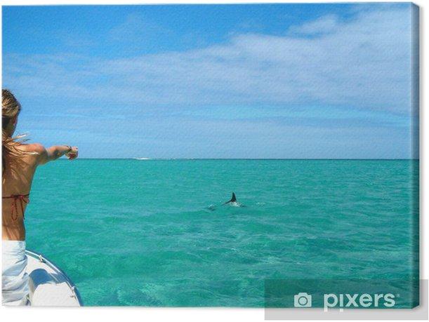 Obraz na płótnie Delfin - Wakacje