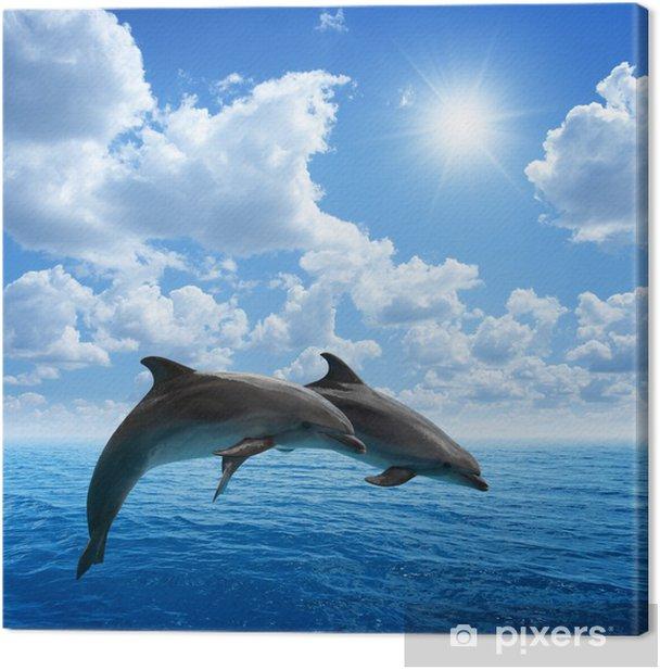 Obraz na płótnie Delfiny skoków - Delfiny