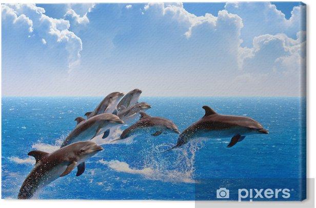Obraz na płótnie Delfiny skoków - Tematy