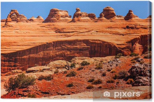 Obraz na płótnie Delicate Arch Rock Canyon Arches National Park Moab Utah - Ameryka