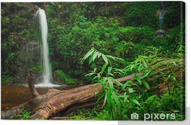 Obraz na płótnie Doi suphet park narodowy wodospad, Chang Mai, Tajlandia - Tematy