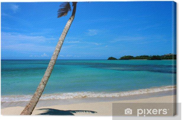 Obraz na płótnie Dominikana - Woda