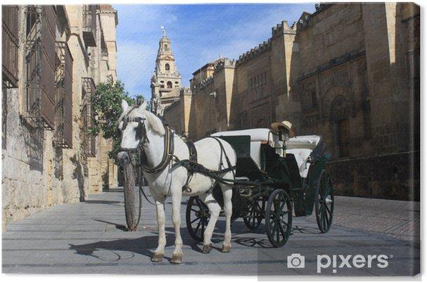 Obraz na płótnie Dorożką barouche przed Mezquite w Kordobie - Transport drogowy