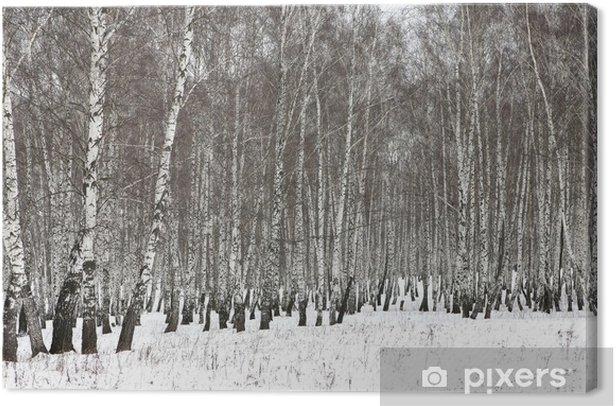 Obraz na płótnie Drewno brzozy w zimie - Tematy