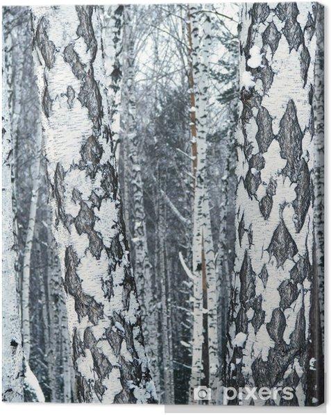 Obraz na płótnie Drewno brzozy - Tematy