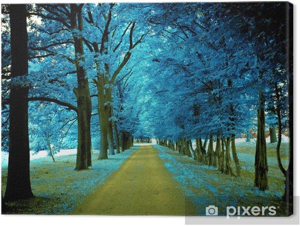 Obraz na płótnie Droga jesienią - Krajobraz wiejski