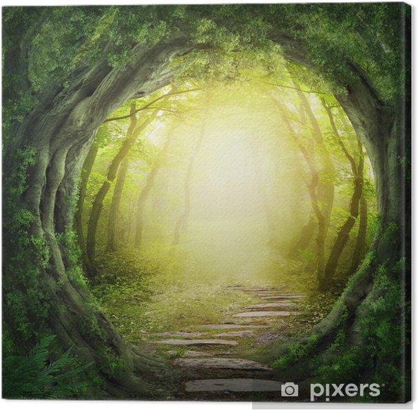Obraz na płótnie Droga w ciemnym lesie - Tematy