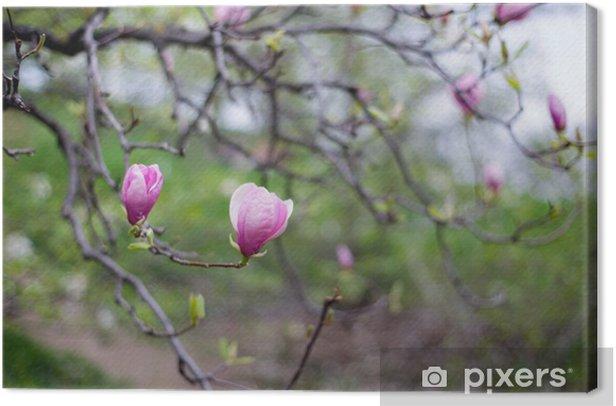 Obraz na płótnie Drzewa magnolii - Pory roku