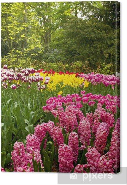 Obraz na płótnie Duch kwiaty pole - Wolność