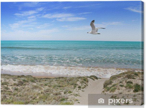 Obraz na płótnie Dune piasku nad morzem - Wakacje