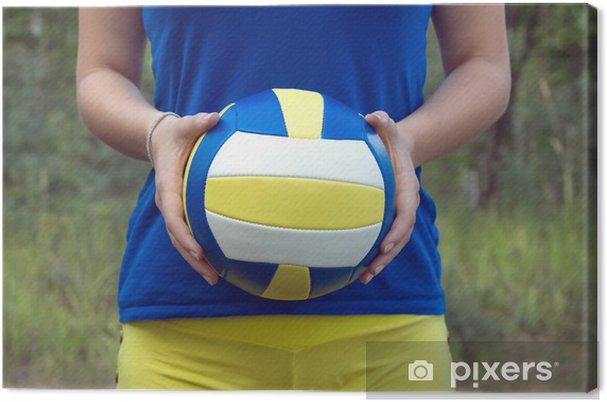 Obraz na płótnie Dziewczyna gospodarstwa kolorowe sportowe piłki do siatkówki z bliska - Tematy