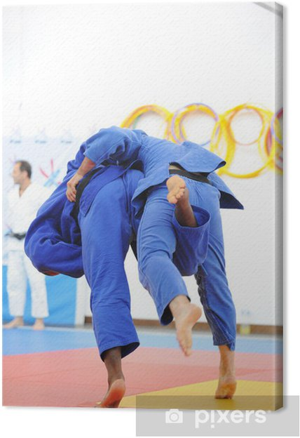 Obraz na płótnie Dżudo - Sporty indywidualne