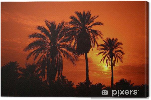 Obraz na płótnie Eloued oddech - Pejzaż miejski