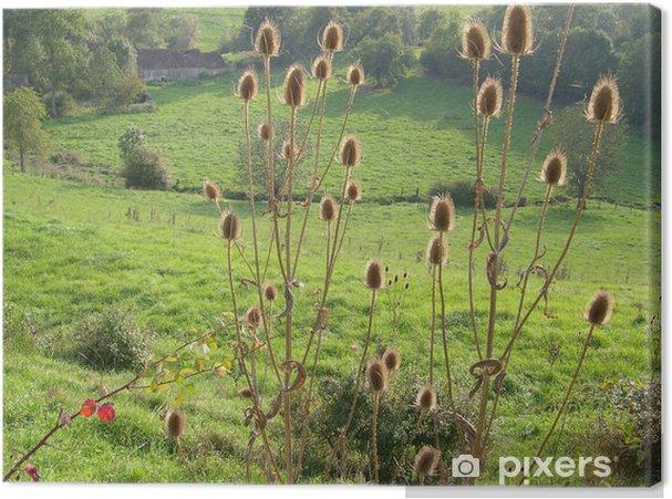 Obraz na płótnie Epines - Rośliny